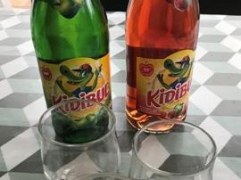test kidibul approuve par les familles
