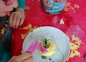 test canal toys approuvé par les familles photo